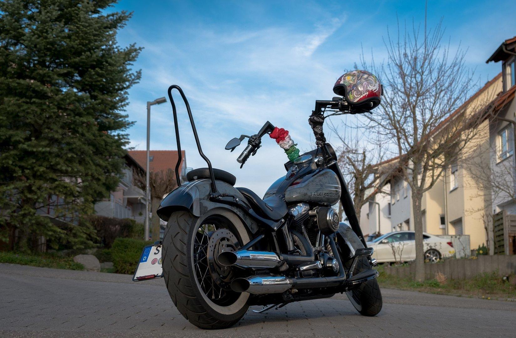 Sissybar für SOFTAIL SLIM Harley-Davidson®, Ø16mm Edelstahl Schwarz ...